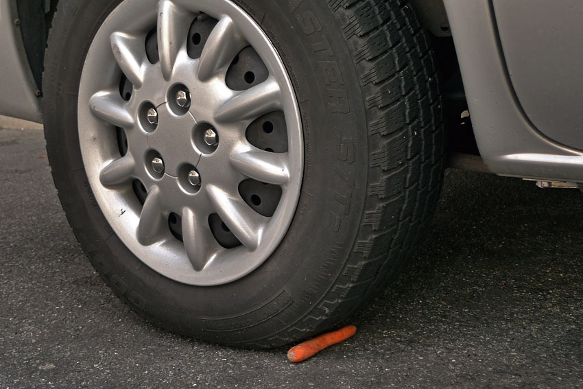 Wheel with carrot