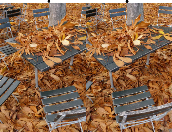 Autumn leaves in 3D