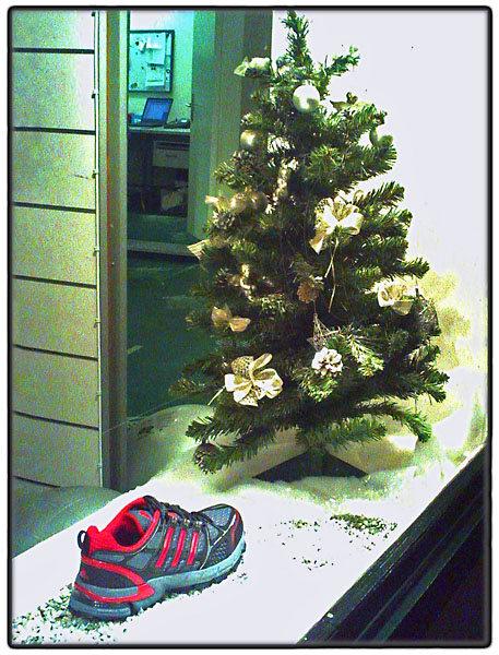 Christmas tree with trainer