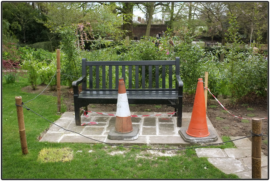 Bench and cones