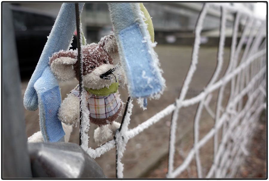 Lost cuddly toy mouse on a frosty day