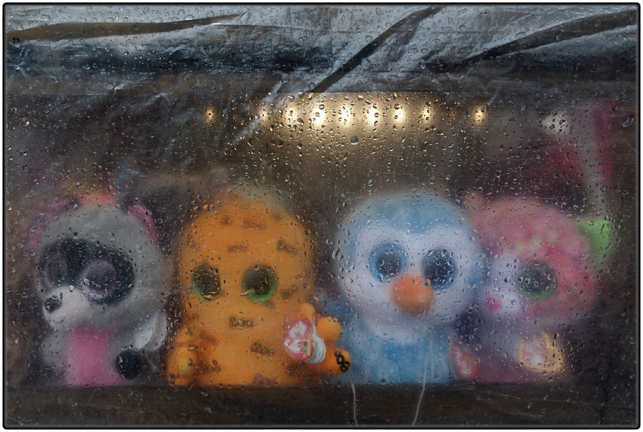 Soft toys in the rain