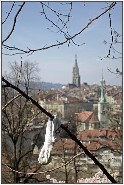 Lost sock and Muenster Cathedral