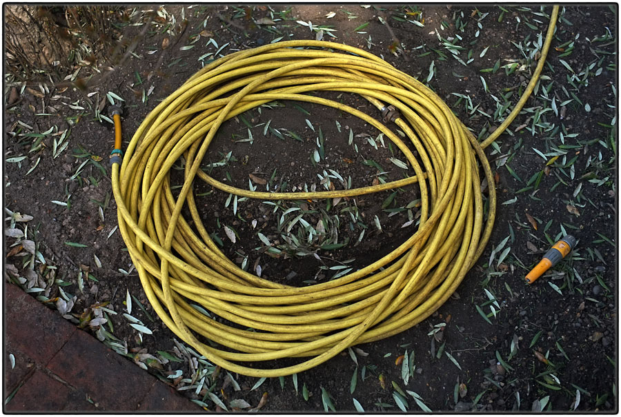 Long yellow water hose