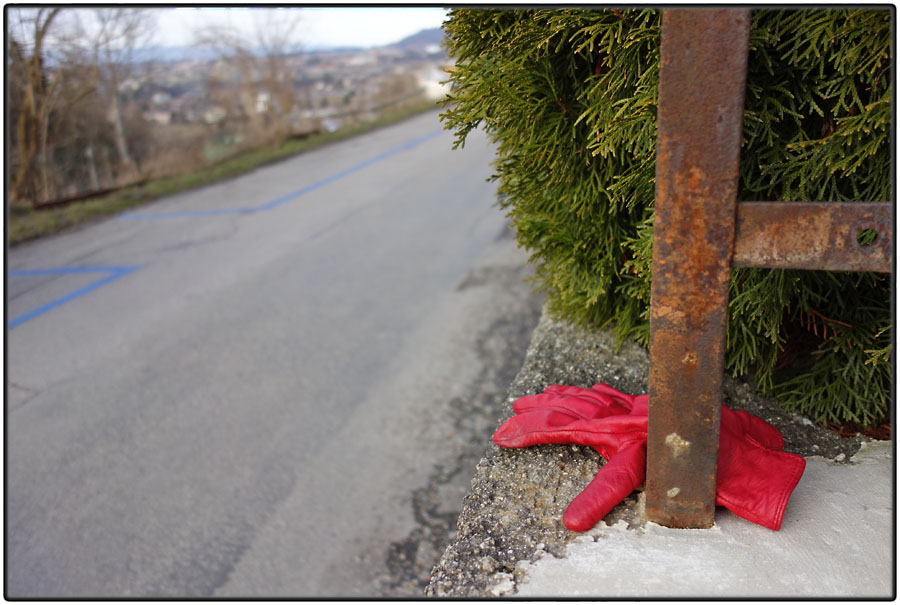 Lost red leather glove