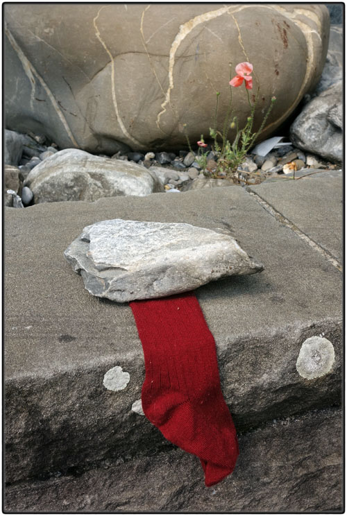 Lost red sock