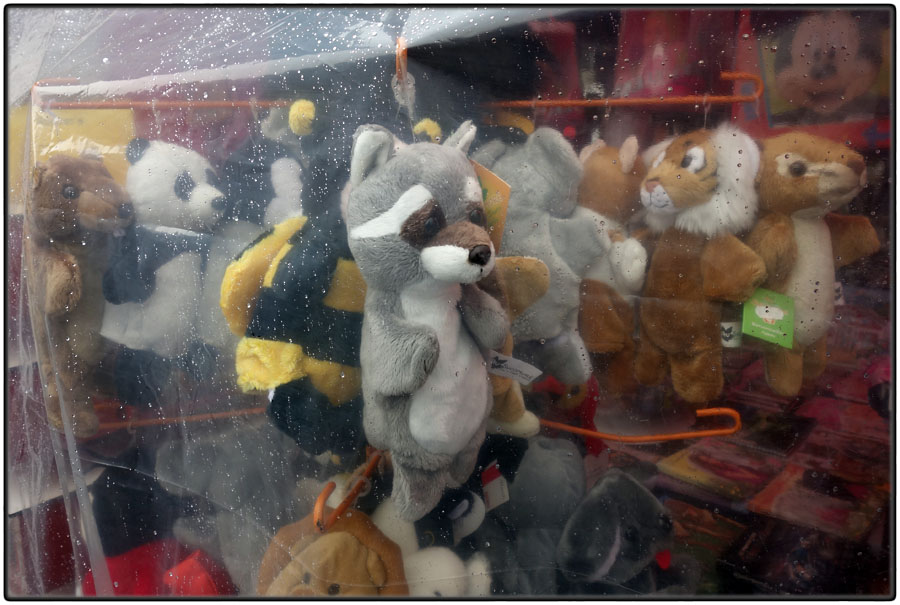 Stuffed animals in rain